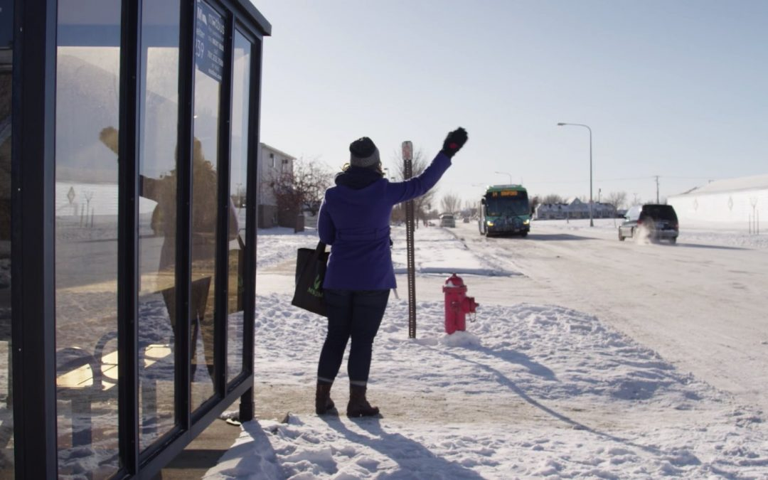 Community Voices: From Sunshine to Blizzards in the Bus System